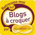 marmiton blog à croquer