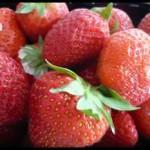 fraisescrea2