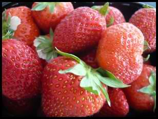 fraisescrea2 Fraises au sucre