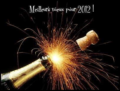 meilleursvoeux2012 Bonne année !