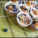 muffins myrtilles C3