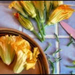 beignets fleur courgette C2