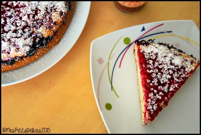 gâteau 4x9 groseilles 1C Gâteau 4x9 aux groseilles