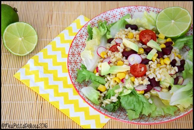 salade de ble a la mexicaine 1C Salade de blé à la mexicaine