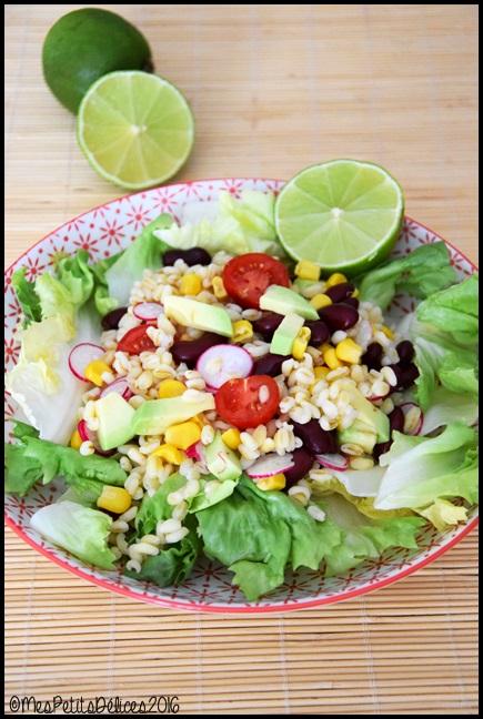 salade de ble a la mexicaine 3C Salade de blé à la mexicaine