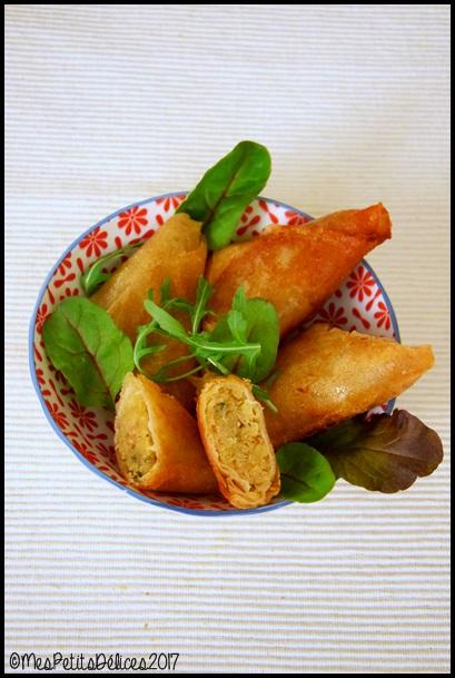 samoussas choucroute au curry 1C Samoussas à la choucroute et au curry
